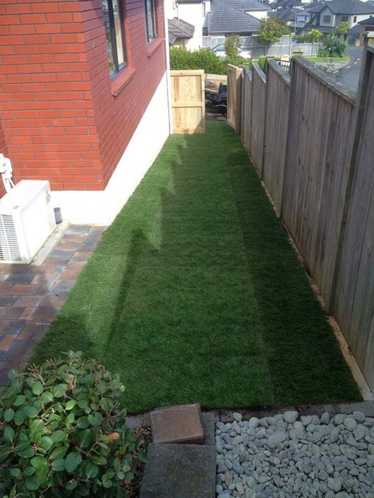Image of Ready lawn